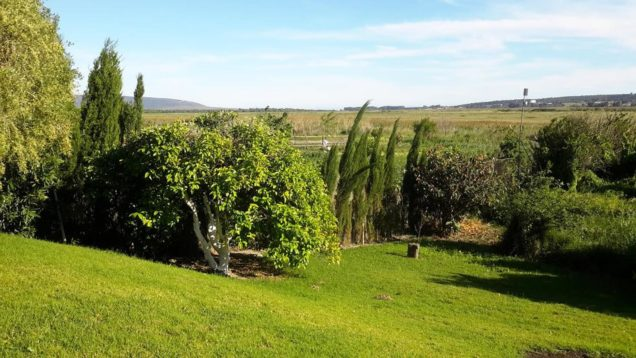 Casa Vejer: garden with views