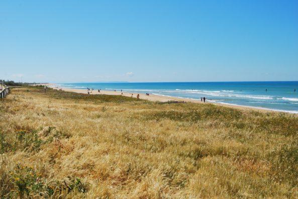 Casa Vejer: El Palmar beach