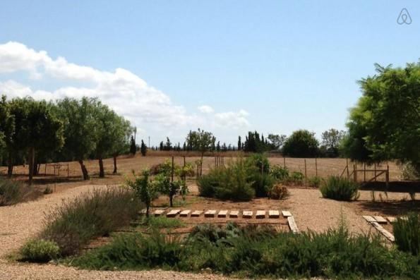 Casa Campos: jardín