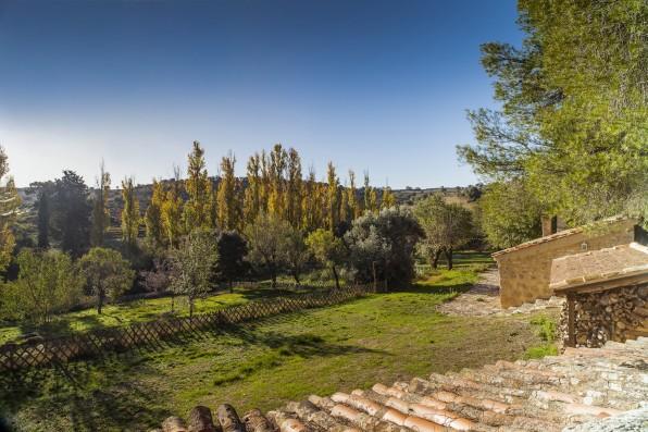 Casa Baltanás: vegetable garden