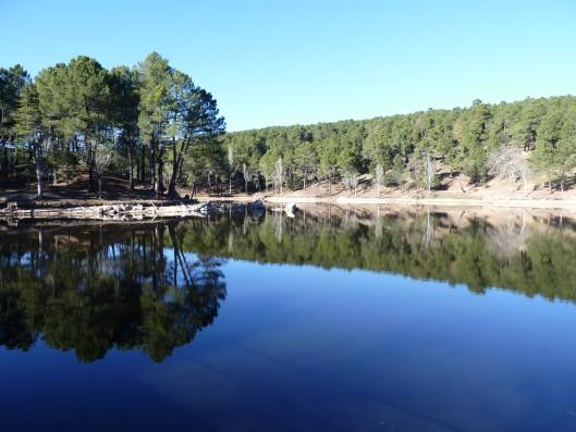 Casa Ciiudad Ducal: lago de la urbanización