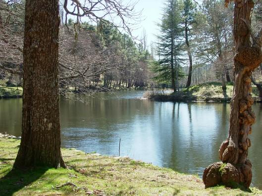 Casa Ciiudad Ducal: lago ciudad condal