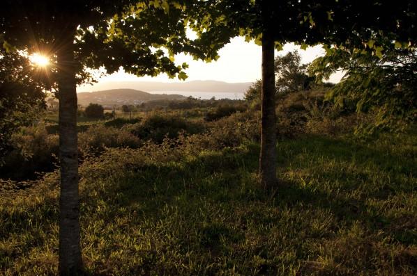 Casa PedraLobo: vistas de la Ría desde el jardín