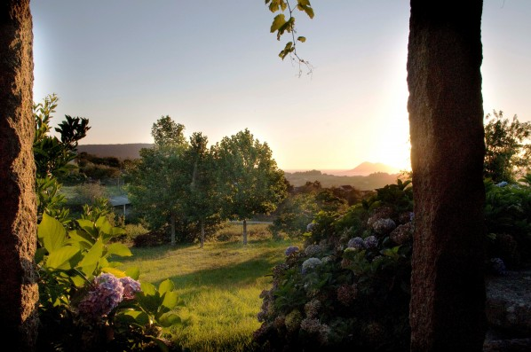 Casa PedraLobo: campo alrededor de la casa