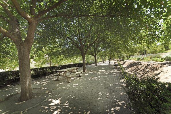 Casa Ronda: garden