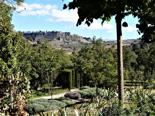 Casa Ronda: garden with view of Ronda