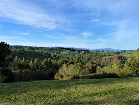 Casa Ruiseñada: view of Picos de Europa
