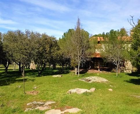 Casa Ortigosa: garden and villa