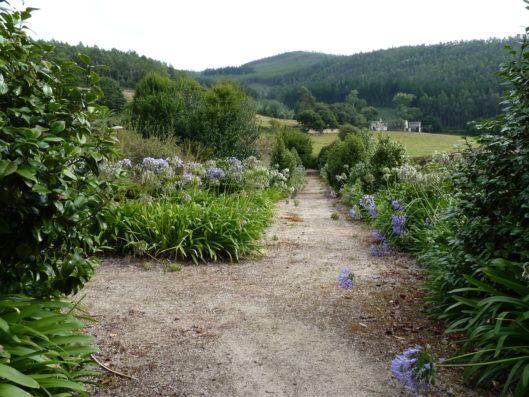 Pazo de Fontao: garden