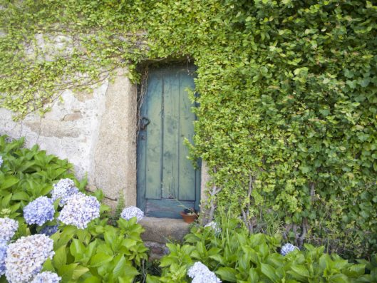 Casa do Retiro: jardín