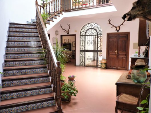 Casa Higuera: entrance hall