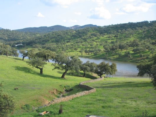 Casa Hinojales: the countryside around the village