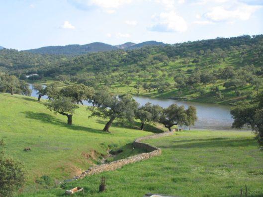 Casa Hinojales: Sierra de Aracena