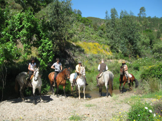 Casa Hinojales: horse riding around Aracena