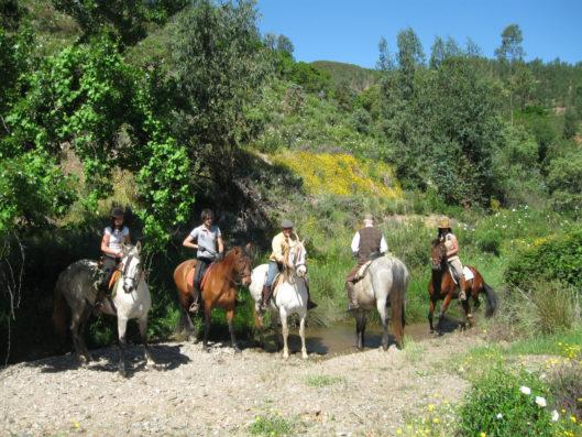 Casa Hinojales: equitación en la zona