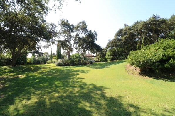 Casa Soto Alto: garden