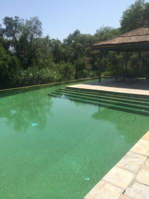 Casa Soto Alto: pool and pergola